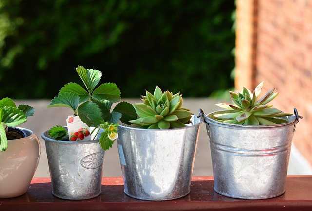 Make the Most of Your Patio or Balcony With These Decorating Tips