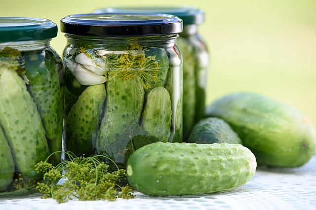 Bring a Love of Brine to the Big Dill Pickle Festival