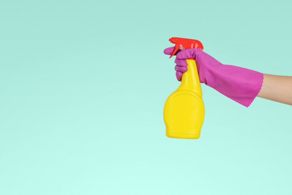 Essential Spring Cleaning Tips for Renters
